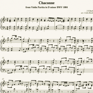 J.S.Bach: Chaconne - after Violin Partita BWV 1004