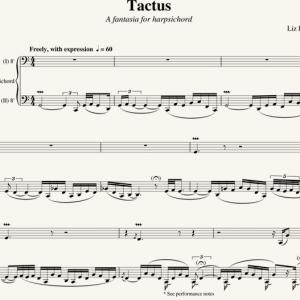 Liz Lane: Tactus - a Fantasia for Harpsichord (2010)